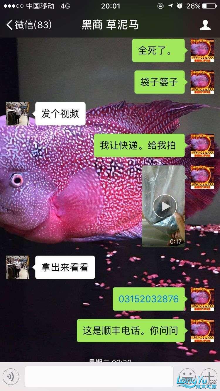 举报一个鞍山骗子 北京龙鱼论坛 北京龙鱼第8张