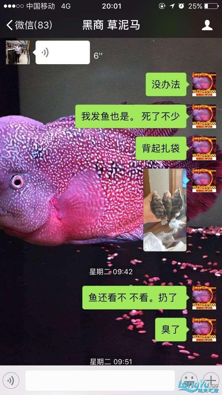 举报一个鞍山骗子 北京龙鱼论坛 北京龙鱼第9张