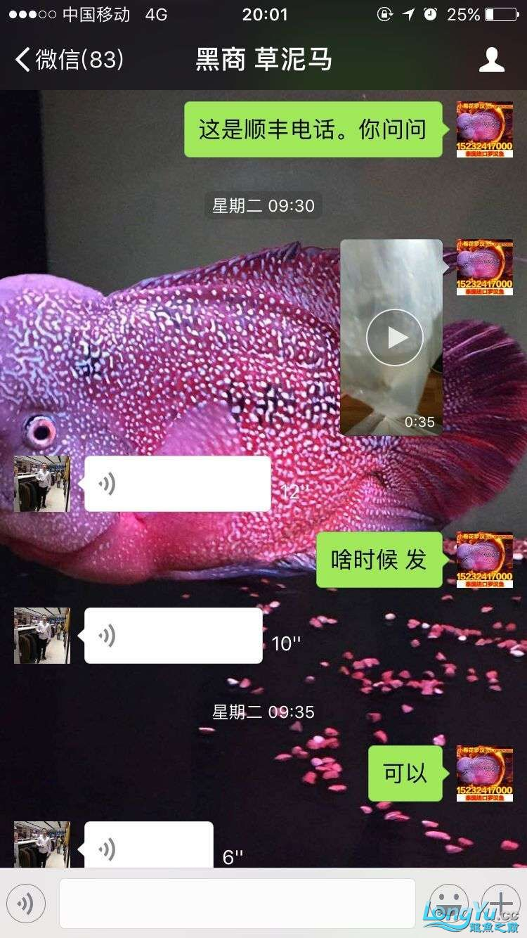 举报一个鞍山骗子 北京龙鱼论坛 北京龙鱼第10张