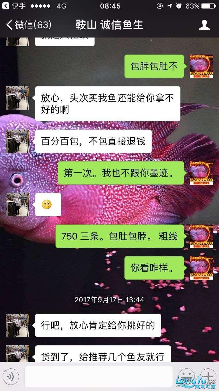 举报一个鞍山骗子 北京龙鱼论坛 北京龙鱼第11张