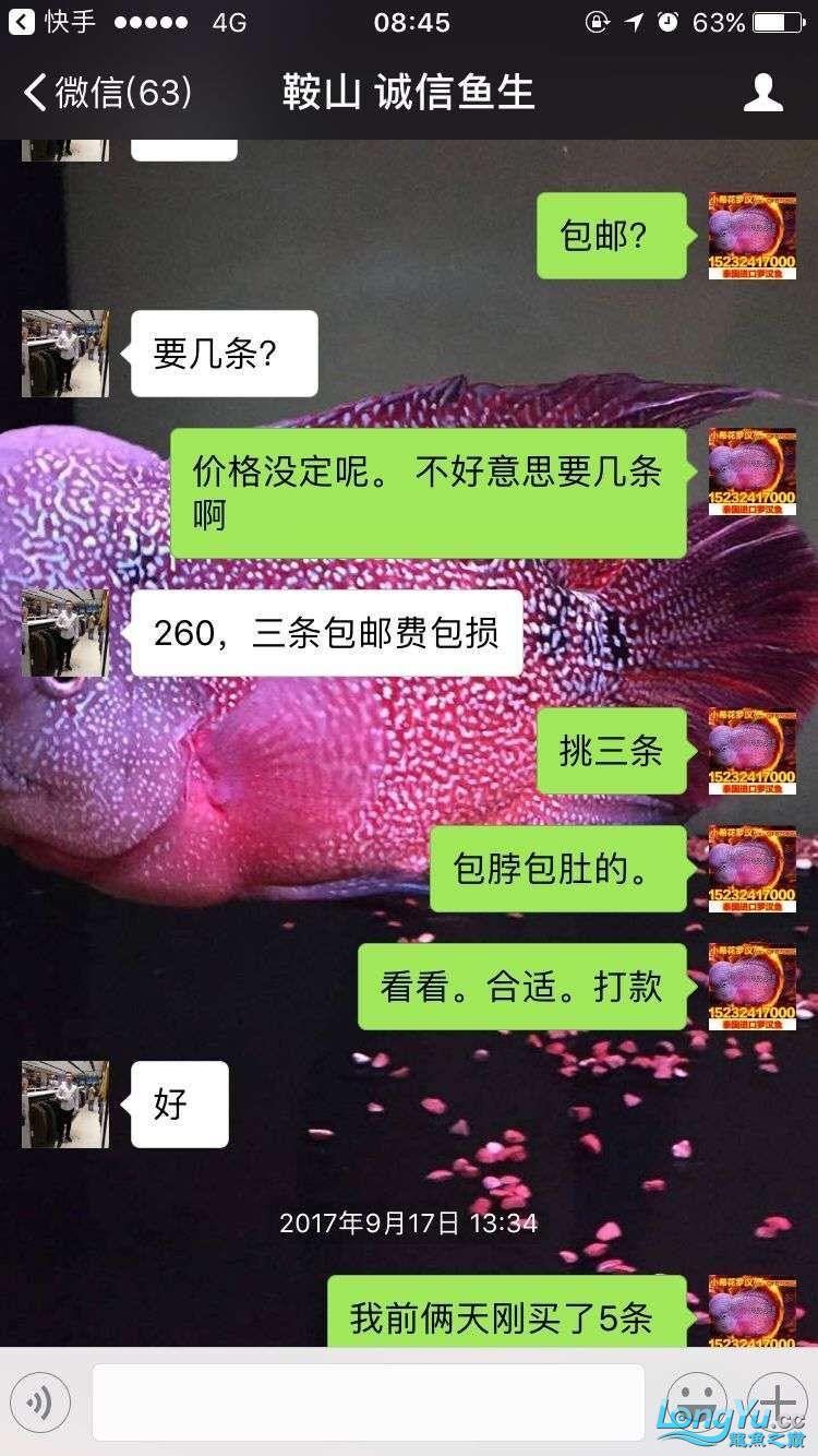 举报一个鞍山骗子 北京龙鱼论坛 北京龙鱼第12张