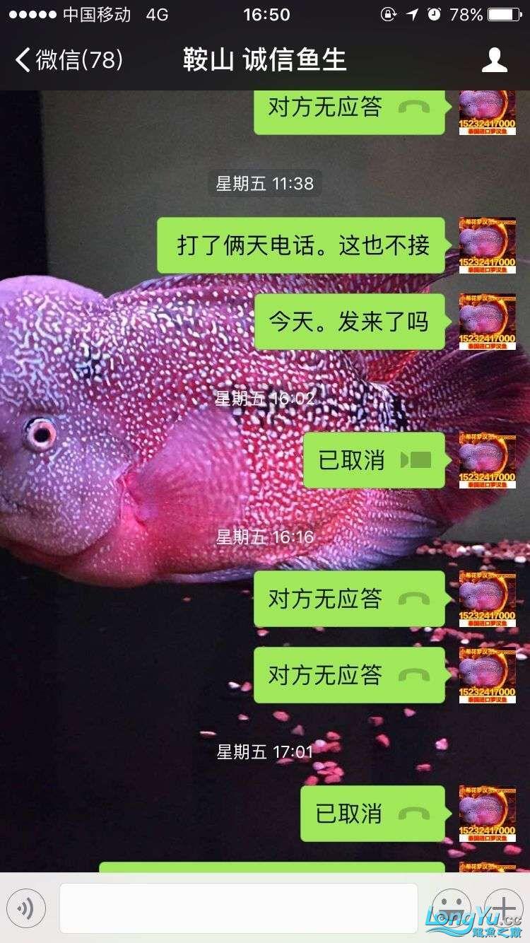 举报一个鞍山骗子 北京龙鱼论坛 北京龙鱼第16张