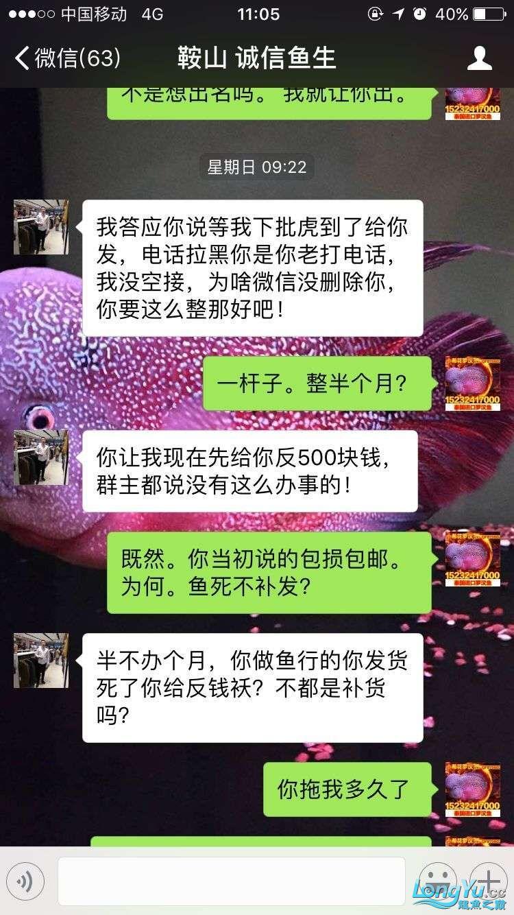 举报一个鞍山骗子 北京龙鱼论坛 北京龙鱼第18张