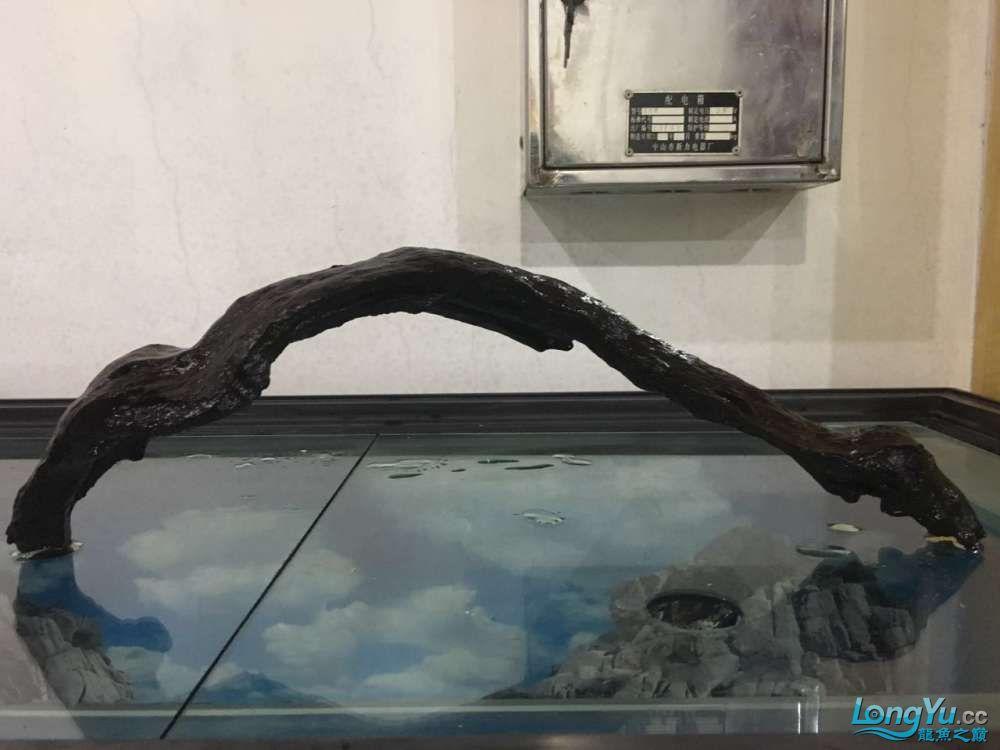 65cm50cm沉木各一 北京龙鱼论坛 北京龙鱼第3张
