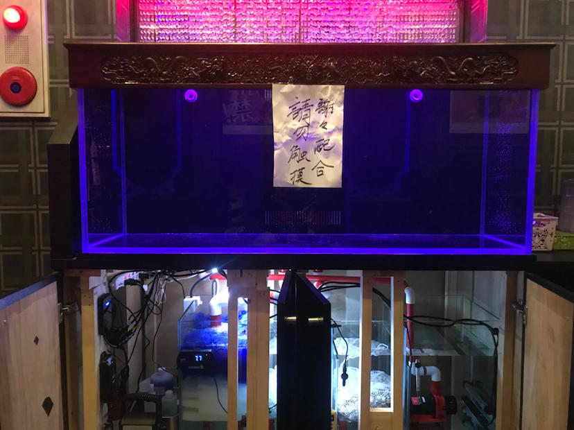 历经3个月在国内定制的鱼缸终于到了 北京观赏鱼 北京龙鱼第7张
