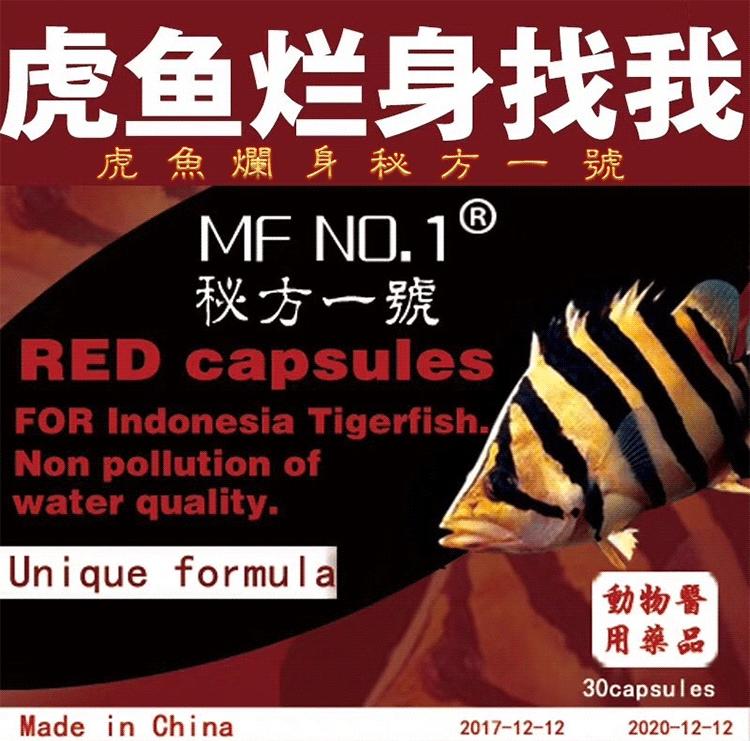 北京花鸟鱼虫市场公交谁用过这个药 效果怎么样 北京观赏鱼 北京龙鱼第1张