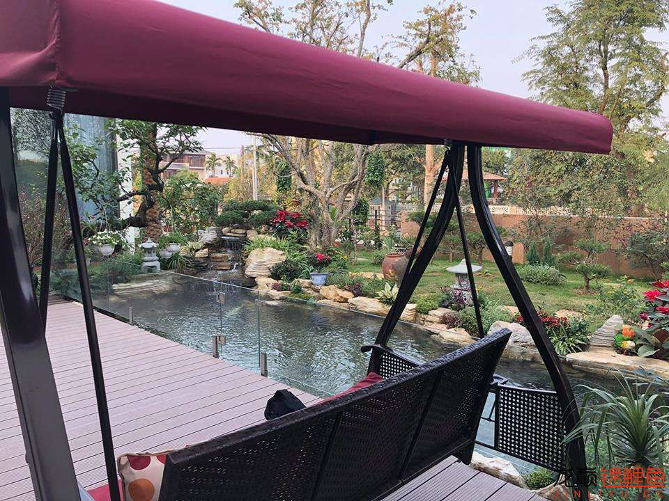 这个院子靓了 北京龙鱼论坛 北京龙鱼第8张