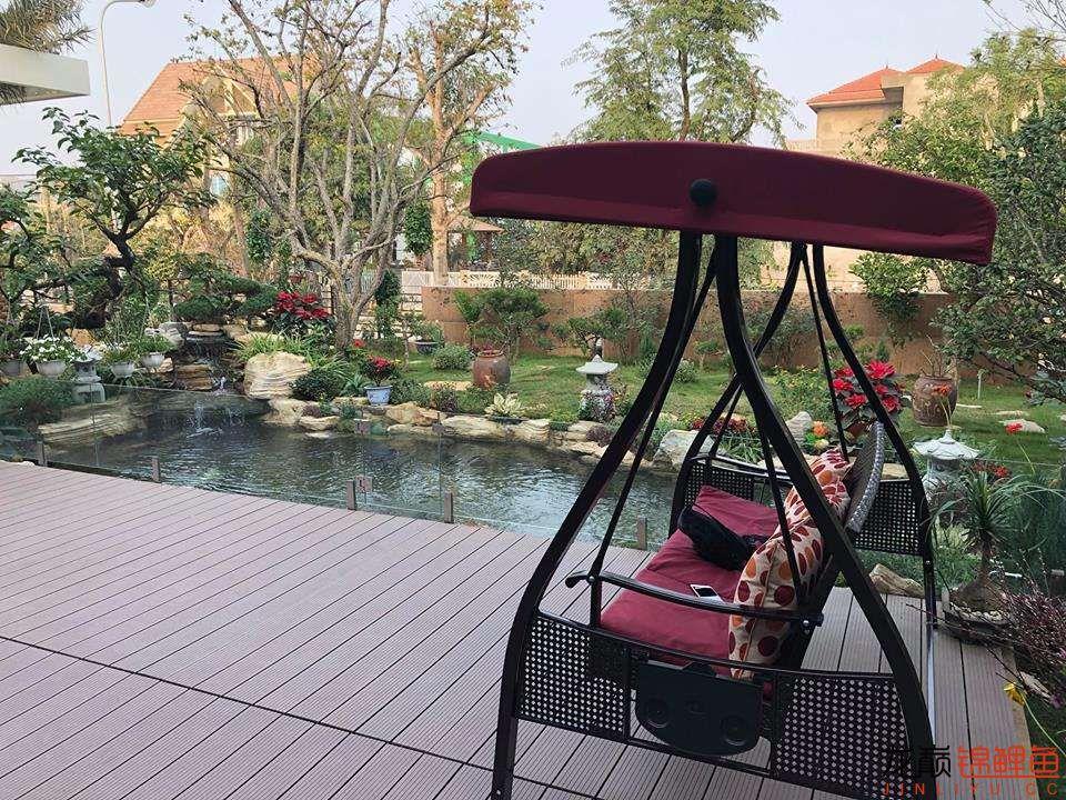 这个院子靓了 北京龙鱼论坛 北京龙鱼第10张