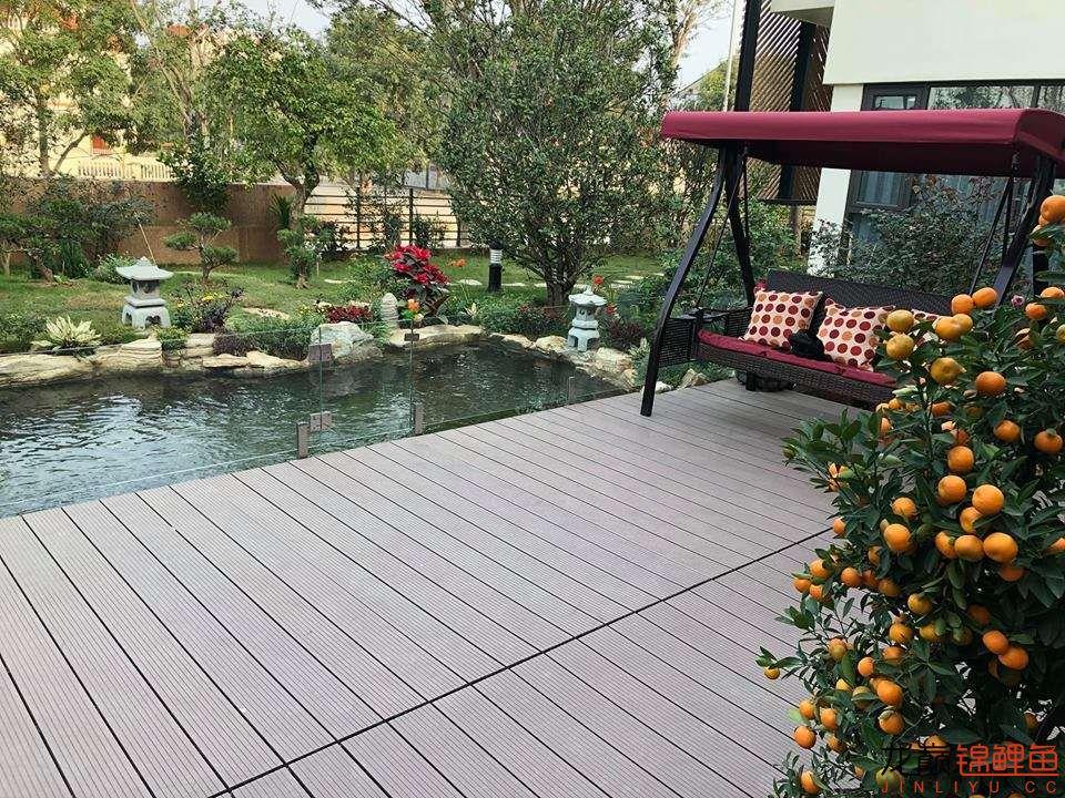 这个院子靓了 北京龙鱼论坛 北京龙鱼第12张