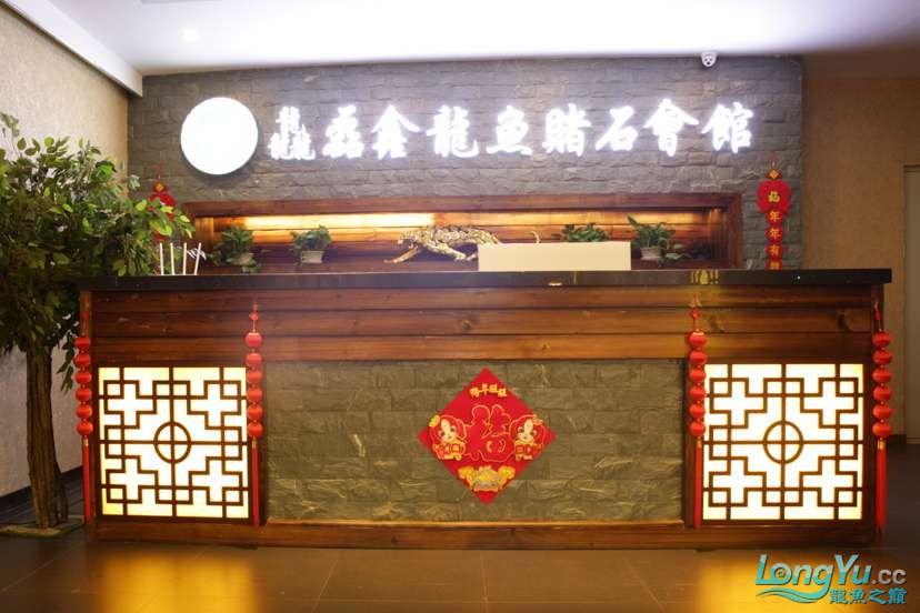 辽宁鱼友圈线下聚会活动如约而至邀您参与 北京龙鱼论坛 北京龙鱼第5张