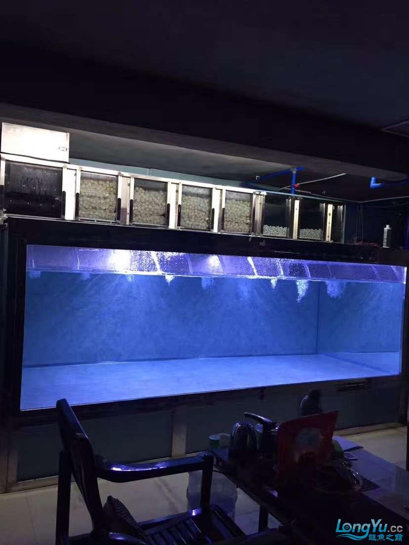 搞个这种不锈钢的缸子造价得多少? 北京观赏鱼