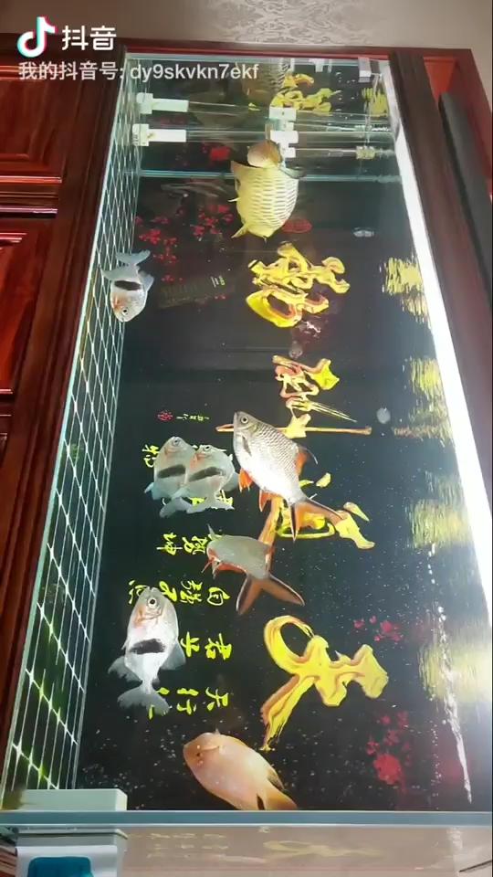 北京皇冠黑白魟鱼论坛新的一天开始了