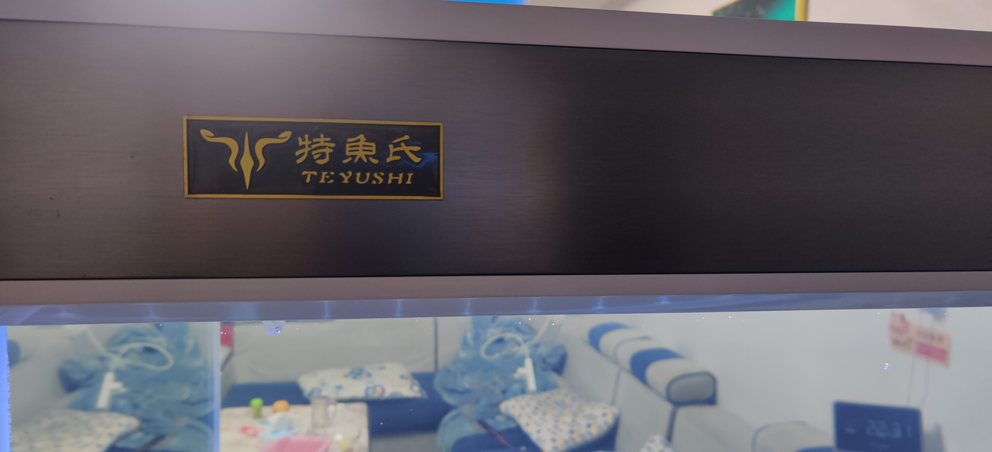 新入特鱼氏鱼缸开缸大吉 北京观赏鱼 北京龙鱼第2张