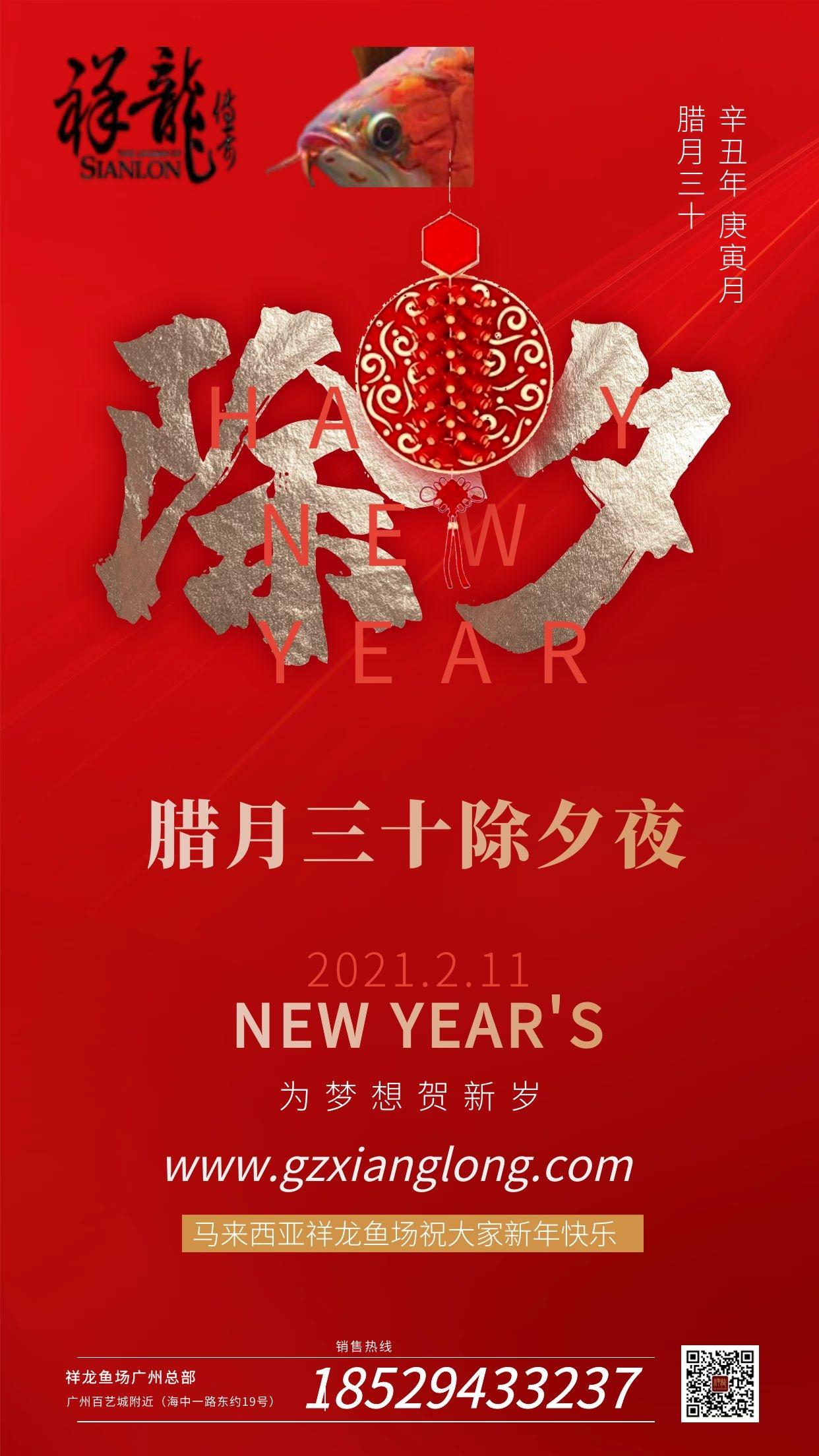 北京祥龙水族馆恭贺本市鱼友新春快乐祝福2021 北京水族馆信息 北京龙鱼第3张