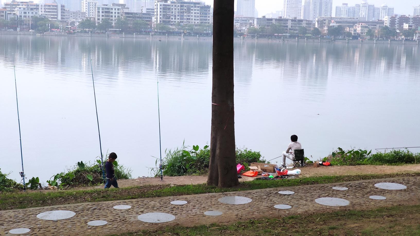 北京细线银板鱼粗线黑桃收获不错 北京龙鱼论坛 北京龙鱼第2张